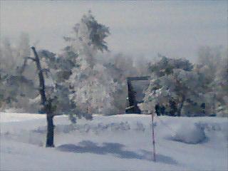 冬景色.JPG